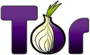 tor browser 300x184 Анонимный браузер   TOR