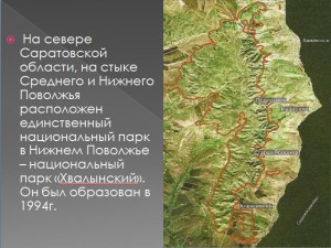 Нац. парк 300x225 Презентация   Национальный парк Хвалынский