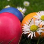 1239981046post 1 1115018894 150x150 С первым днем Весны!