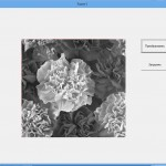 change color gray10 150x150 Простая база данных на Delphi7 Телефонная книжка