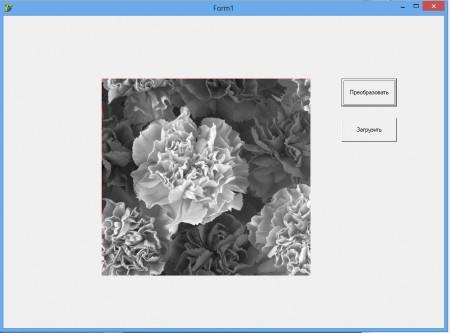 change color gray10 450x333 Преобразование в оттенки серого на Delphi 7