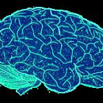brain 150x150 Как пользоваться почтовым сервисом Gmail в автономном режиме